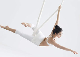 Fly Yoga|理疗空中瑜伽 - 全日制特色进修班